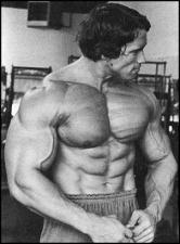 arnold-schwarzenegger-bodybuilding.jpg - Размер: 26,64К, Загружен: 229
