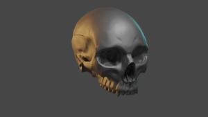 skull.png - Размер: 1,39МБ, Загружен: 25