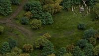 pe-wilderness-01-1920x1080.jpg - Размер: 562,57К, Загружен: 326