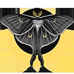Аватар пользователя Prince-Moth