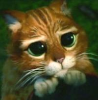 Аватар пользователя marmuletik