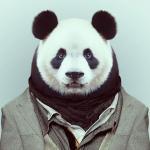 Аватар пользователя himeron255