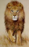 Аватар пользователя Lion_98